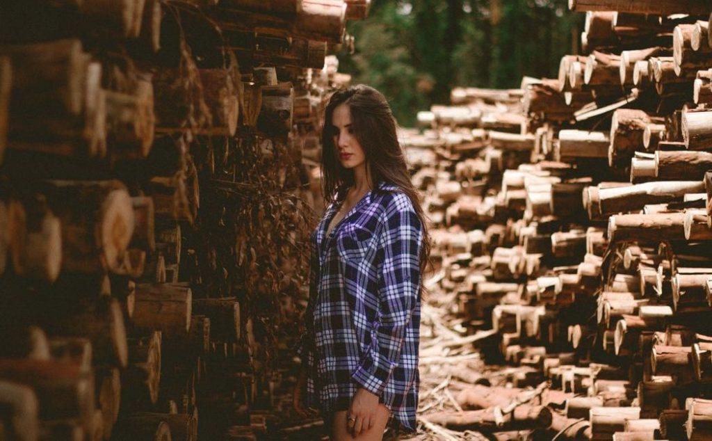Ducerf: Holz-Export in mehr als 40 Länder