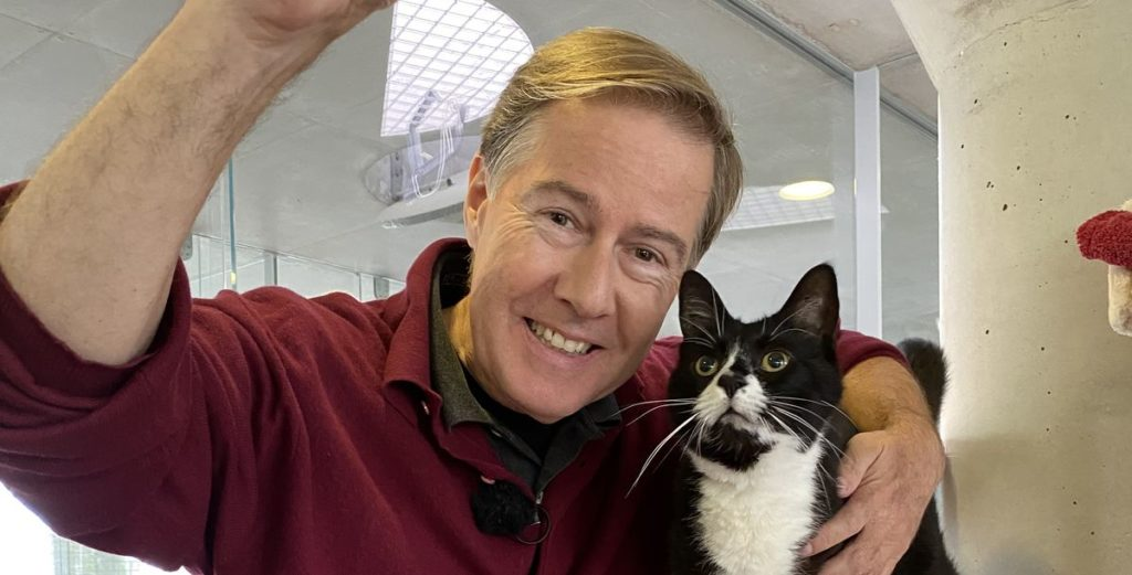 Live-Tiervermittlungsabend: Haustier sucht Herz
