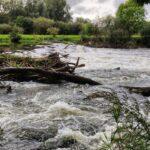 57 Millionen Euro für die Hochwasser-Opfer bei ARD-Spendenaktion